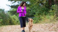 How much does a dog walker cost