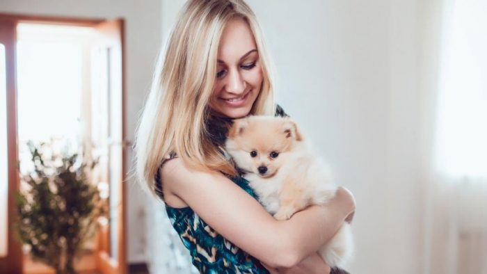 Become A Pet Sitter