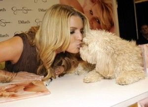 Jessica Simpson and Dog Daisy