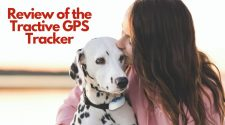 Review of the Tractive GPS Tracker