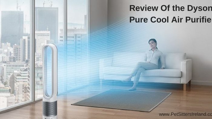 Review of The Dyson Pure Cool Air Purifier