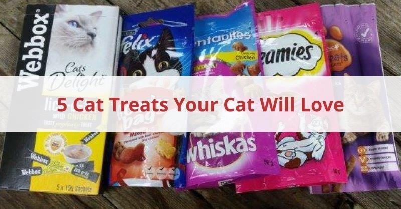 5 Cat Treats Your Cat Will Love