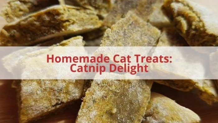 Homemade catnip cat treats