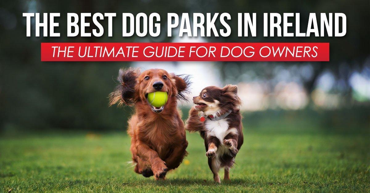 Best Dog Parks Ireland