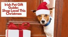 Irish Pet Gift Guide