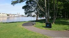 Best Places To Walk Your Dog in Athlone