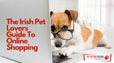 Irish pet lovers guide to online shopping