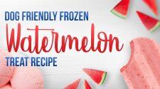 Watermelon Dog Treats
