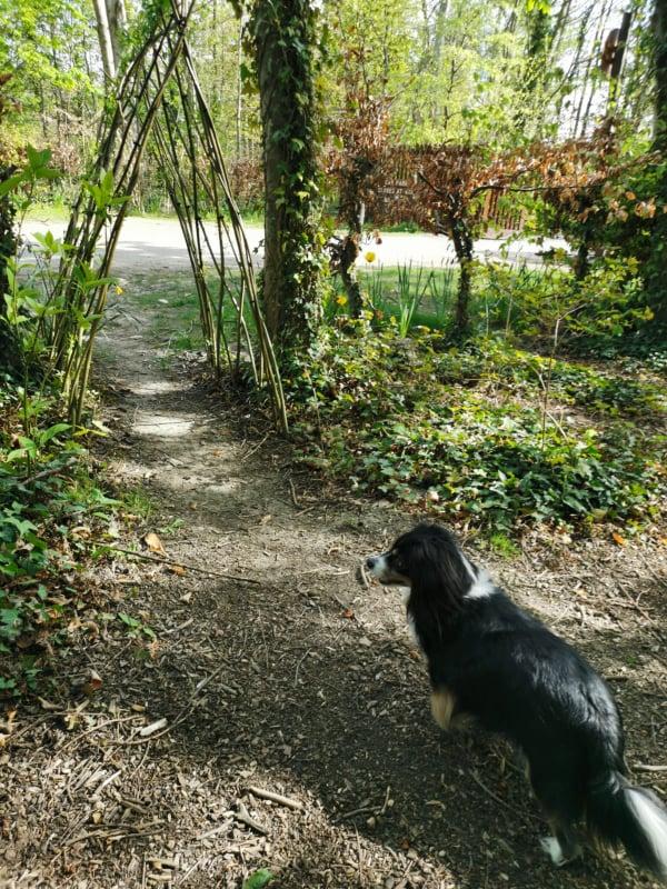Corkagh Park Walk