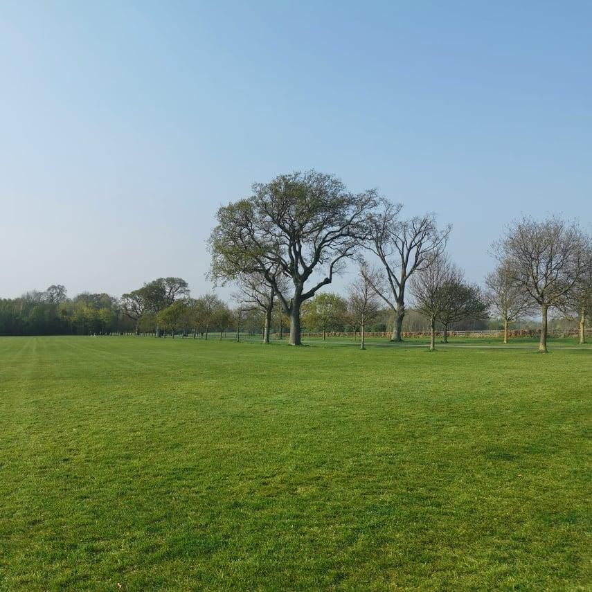 Corkagh Park.